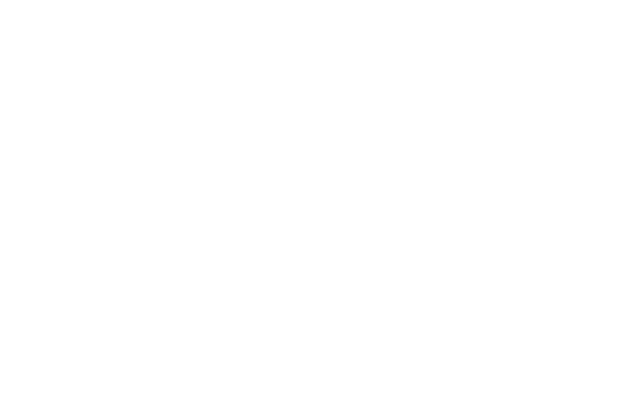morarci group